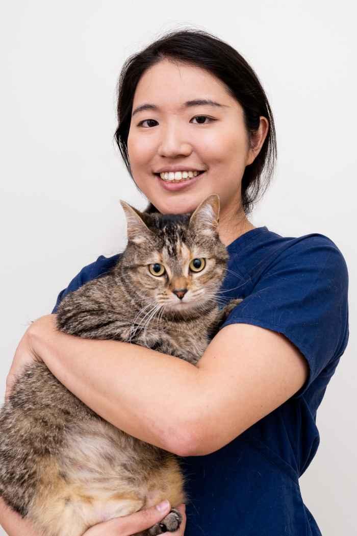 Dr. Rie Sato BVSc